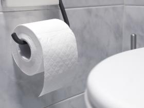 toilet roll and toilet