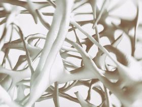 weakening bones - osteoporosis