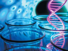 genetics dan test breast cancer
