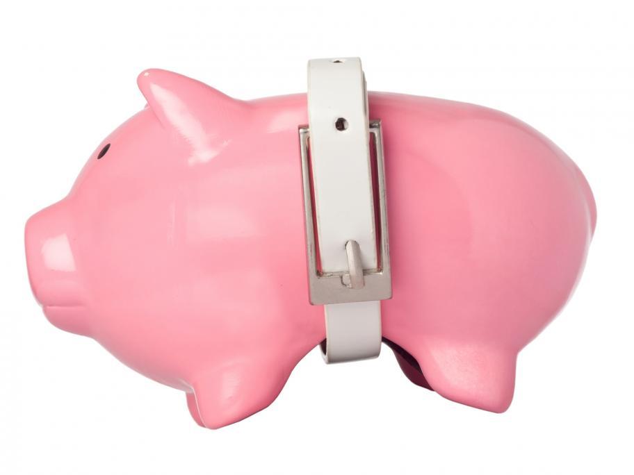 Belt on a pig