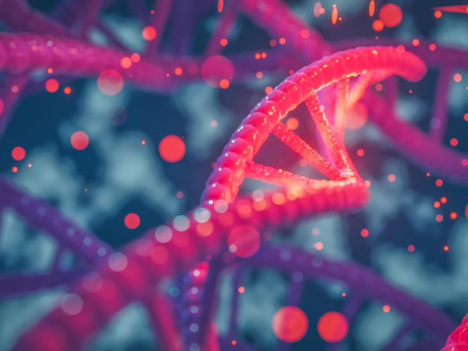 genes, DNA