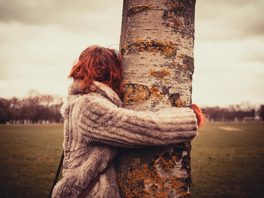 Tree-hugging