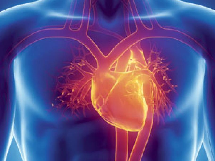 cardio concept