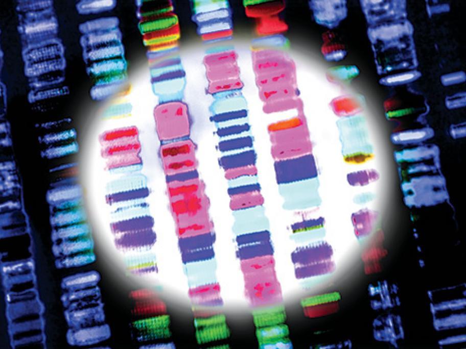 Genetic test