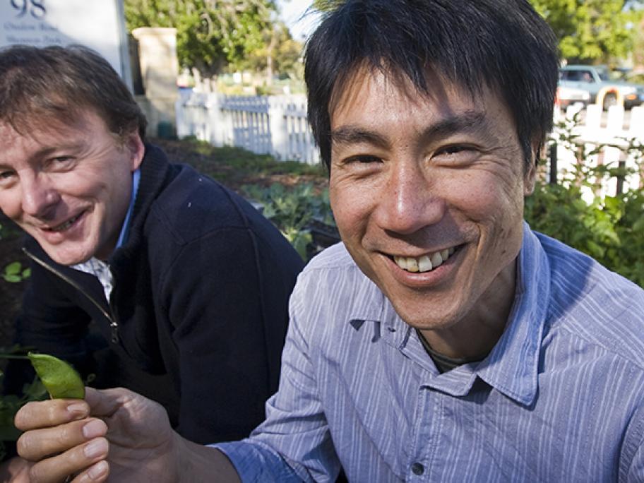 Dr Crisp and Dr Yin